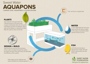 SWF_Aquaponics_Junior_Overview_v01-1024x731
